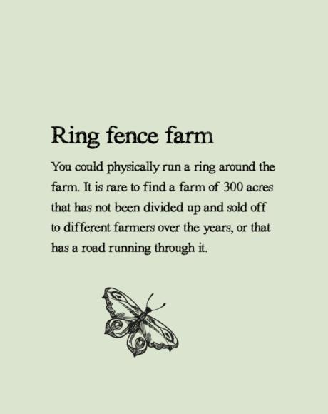 Ringfence